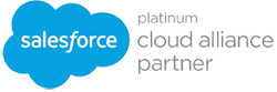 salesforce platinum partner sm